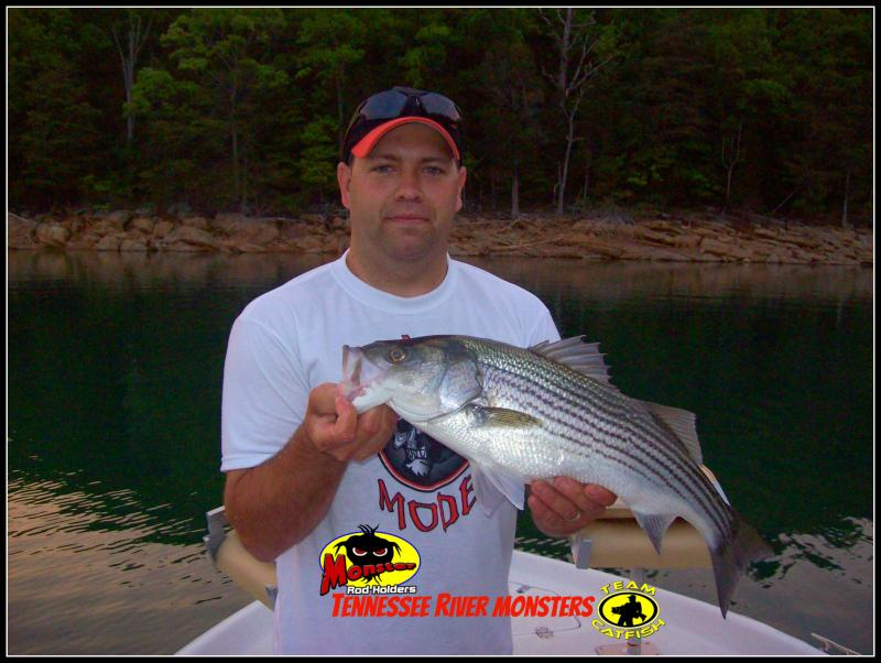 Pictures nashville fishing guides tennessee crappie for Crappie fishing in tennessee